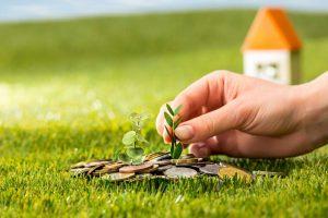 plant growing coins glass jar money green grass